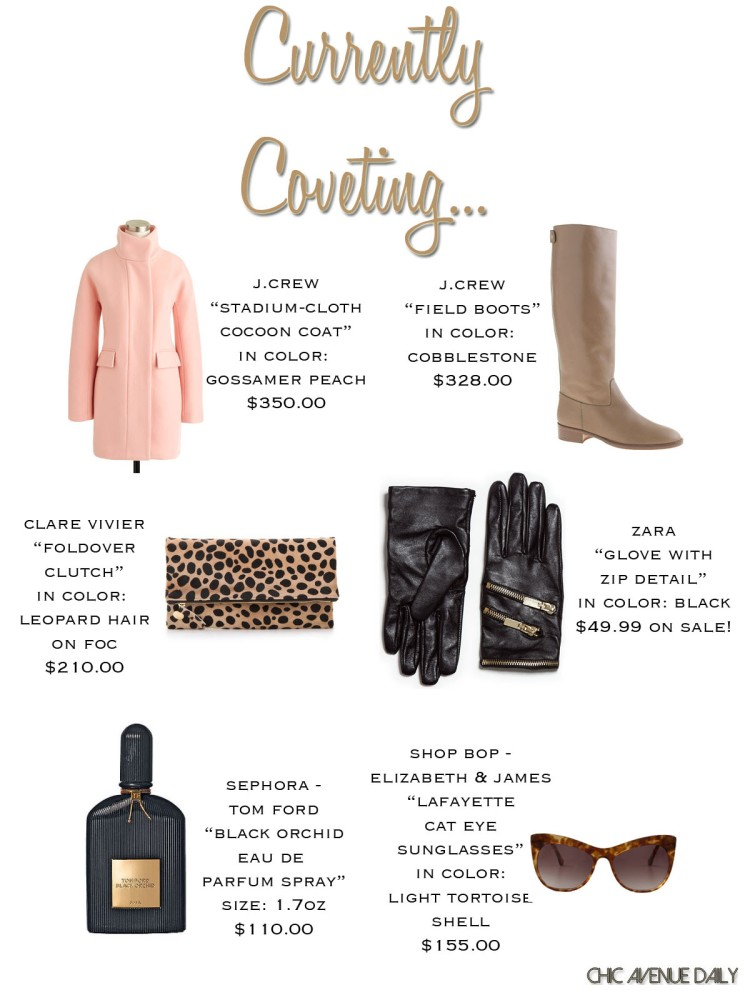 currentlycoveting12-24-13